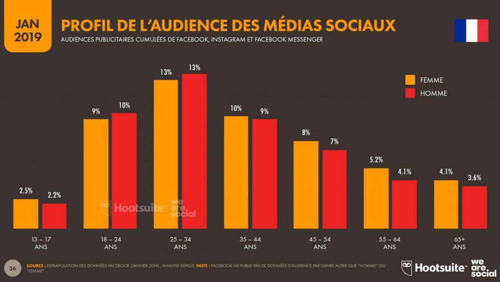 Profil de l'audience des médias sociaux en France - Extrait étude Hootsuite rapport annuel 2019